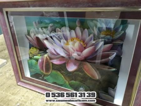 Suda Açan Nilüfer Çiçekleri 3 Boyutlu Çerçeve